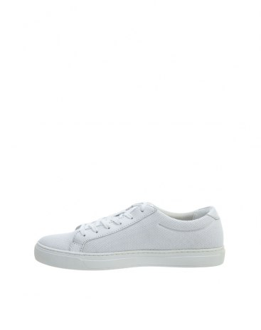 White Unisex Casual Shoes