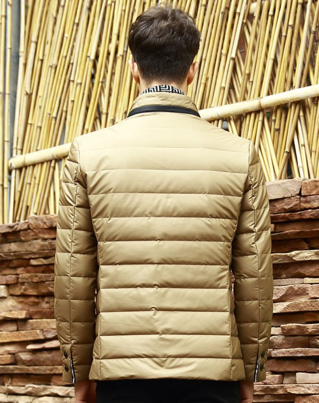 Long Sleeve Standard Men's Down Coat