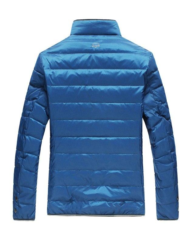 Blue Long Sleeve Standard Men's Down Coat