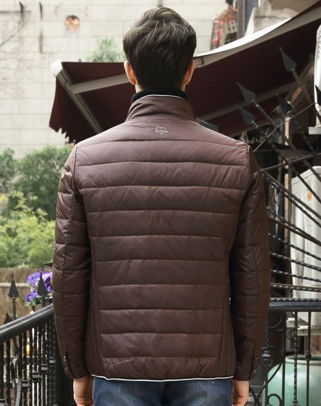 Coffee Long Sleeve Standard Men's Down Coat