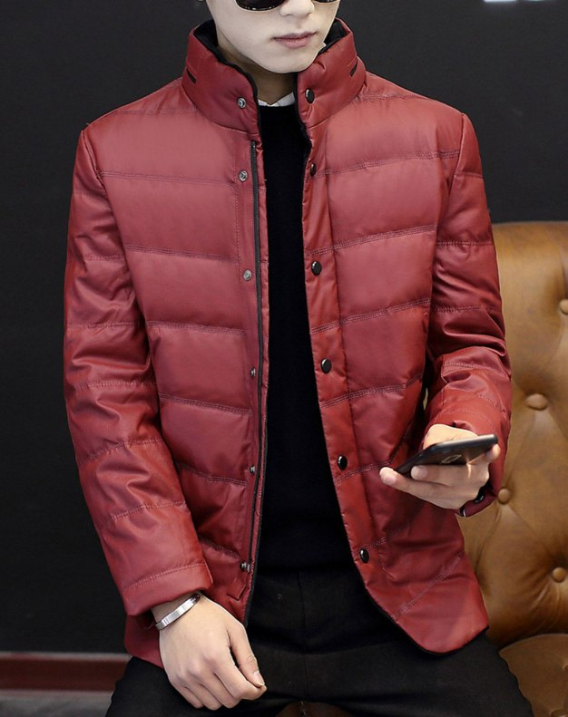 Red Stand Collar Long Sleeve Standard Men's Down Coat