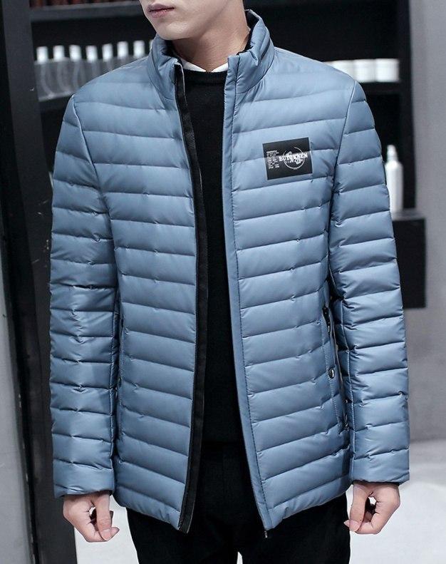 Gray Stand Collar Standard Men's Down Coat