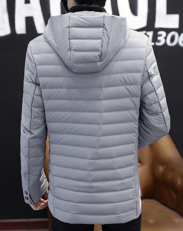 Gray Long Sleeve Standard Men's Down Coat