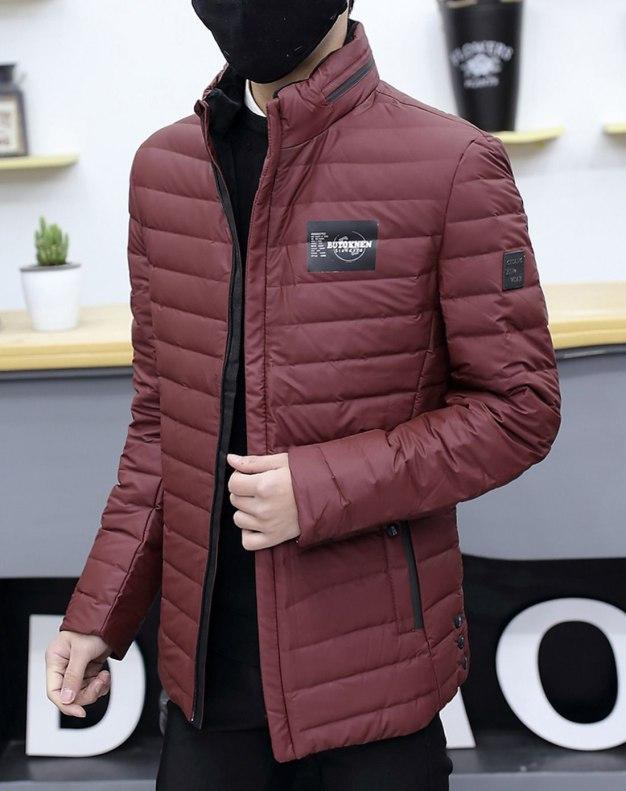 Red Stand Collar Standard Men's Down Coat