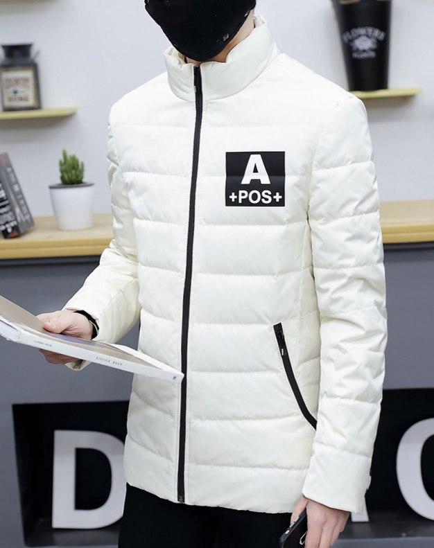 White Stand Collar Long Sleeve Standard Men's Down Coat