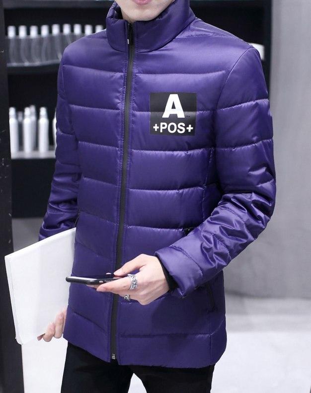 Purple Stand Collar Standard Men's Down Coat