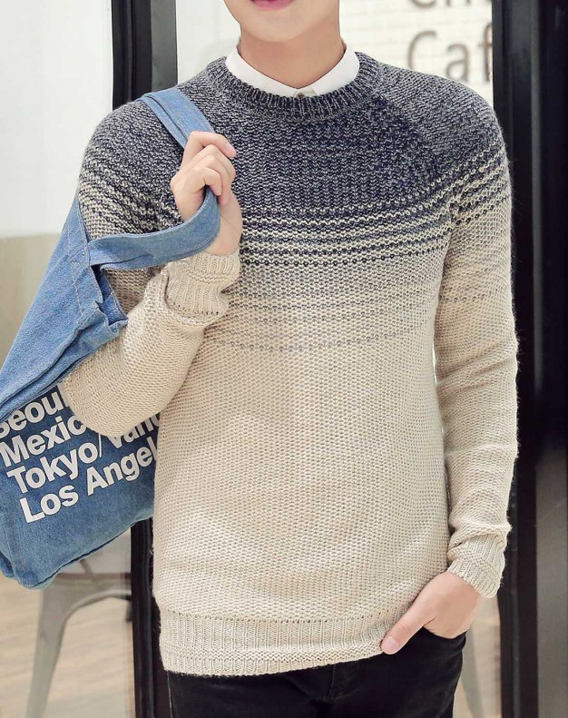 Blue Long Sleeve Standard Men's Sweater