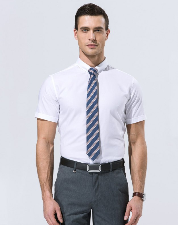 White Plain Stand Collar Short Sleeve Standard Men's Shirt