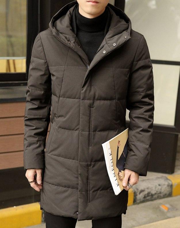 Coffee Hidden Hood Long Sleeve Standard Men's Down Coat