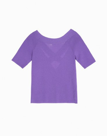 Plain Round Neck Short Sleeve Fitted Women's Knitwear