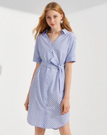 Blue V Neck Standard Women's Dress