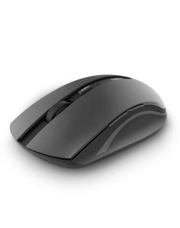 Gray Mice
