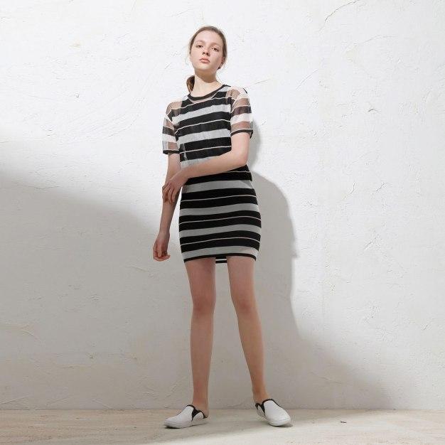 Round Neck Sleeve Standard Women's Dress